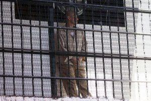 Cuatro de cada 10 internos en prisiones federales no tienen sentencia