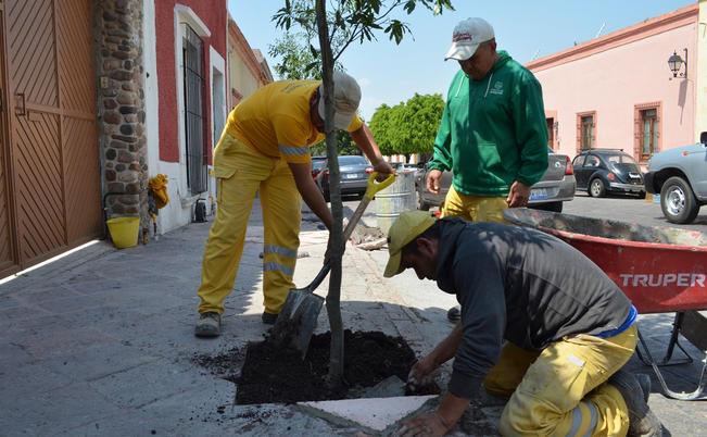 En mayo se espera el inicio de operaciones del Instituto de Ecología y Cambio Climático