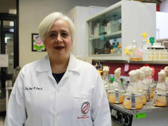 IPN desarrolla bioinsecticidas